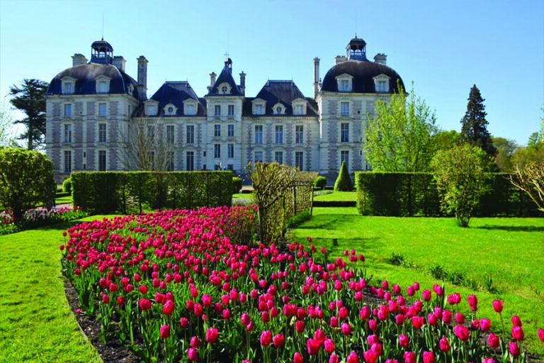 jardin chateau 2
